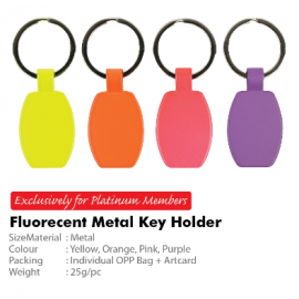 Fluorescent Metal Key Holder