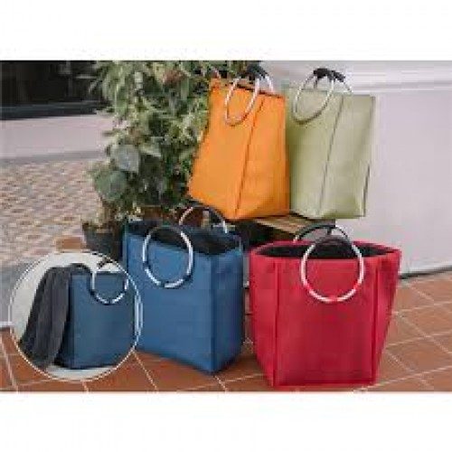 Trendy Carry Bag B358